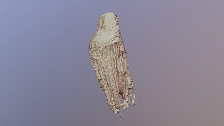 Espeleotema Cav. Diabo (Speleothem Devil's Cave) 3D Model