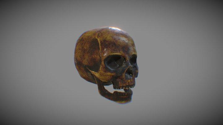 Torched skull 3D Model