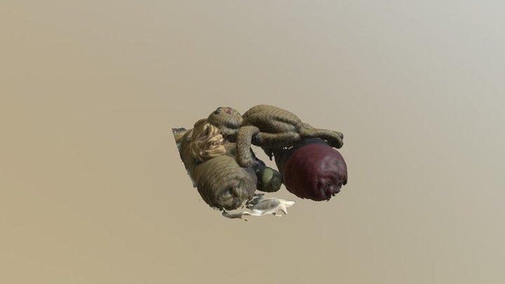Ragdoll 3D Model