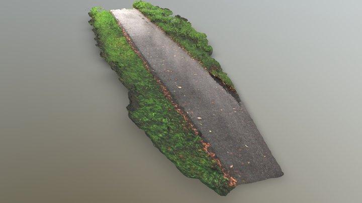 Bicycle lane 3D Model