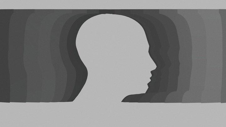 rotating head illusion 3D Model