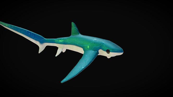 Stylized Shark 3D Model
