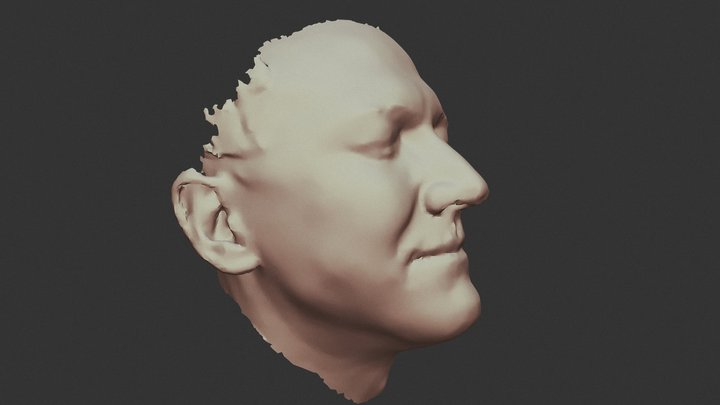 Simon 3D Model