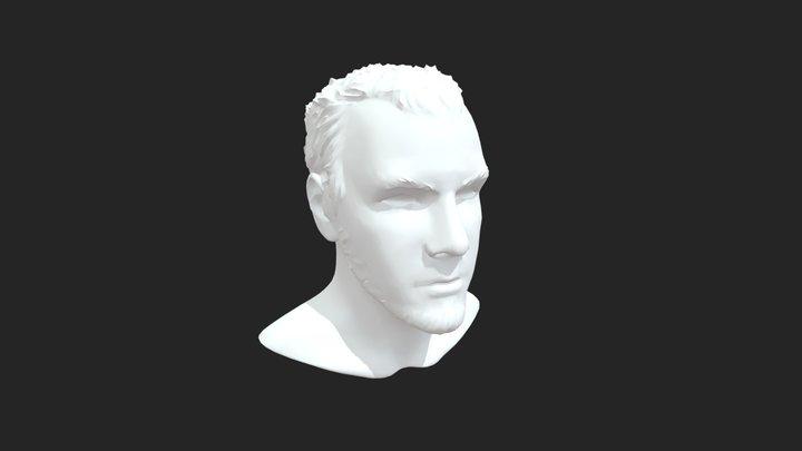 Self-Sculpt(Ultra-Decimated) 3D Model