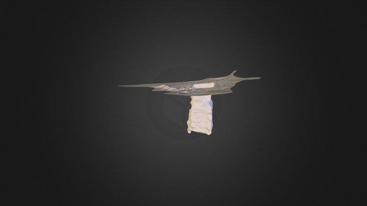 PhoenixBox 3D Model