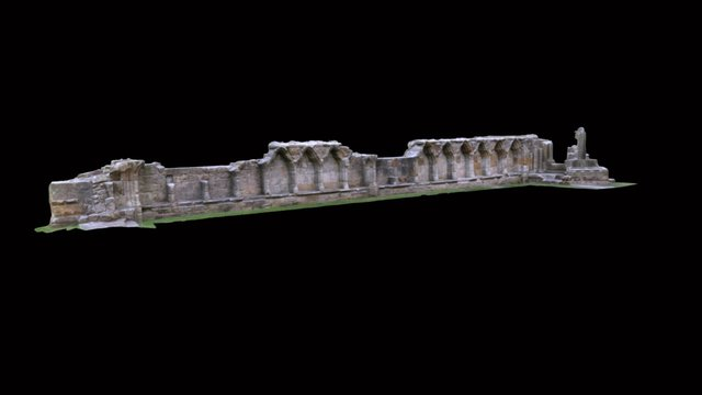 Wall Section from St Andrews Cathedral 3D Model