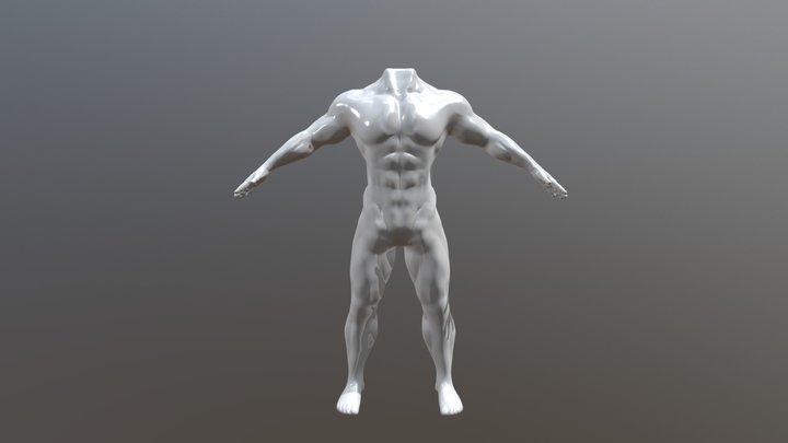 Torso by Luis Felipe Garavito 3D Model