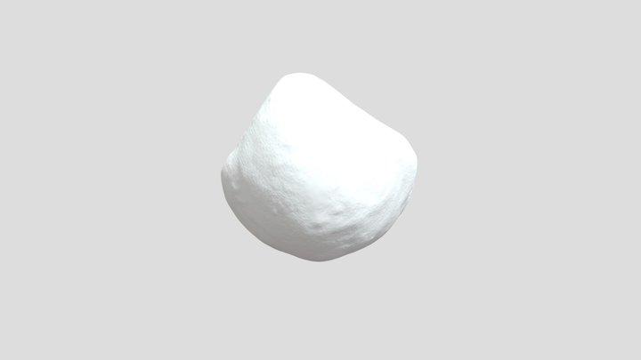 Terebratule 3D Model