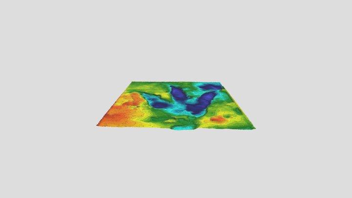 Queensland Dinosaur footprint (Oakey) 3D Model
