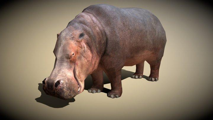 3DRT - Safari animals - Hippo 3D Model