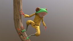 Kung Frog 3D Model