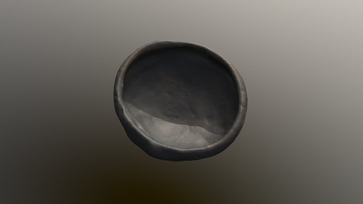 HALLAZGO 001 3D Model