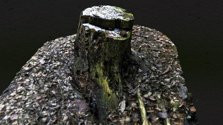Snowy Tree Stump - Austrian Woods / Alps 3D Model