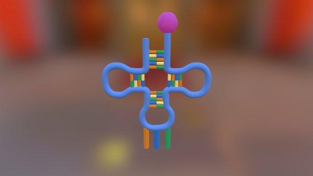Trna 3D Model