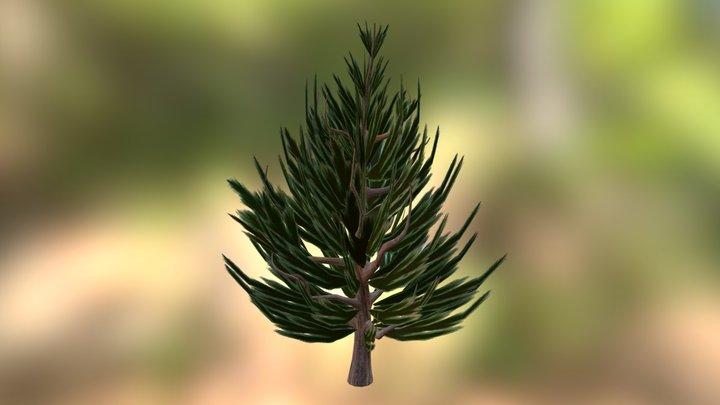 Fir Tree 1 3D Model