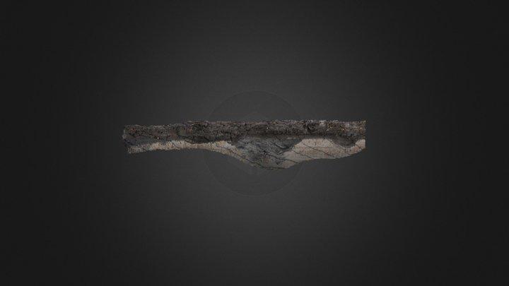 Rikkert, prof5 3D Model