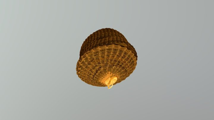 Baleen Basket 2 3D Model