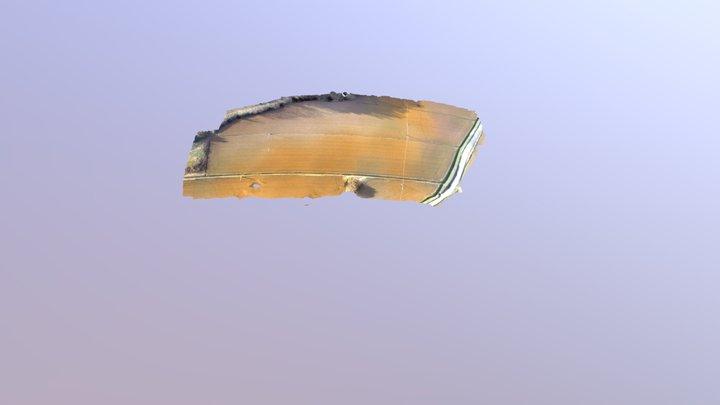 Odm Textured Model Geo 3D Model