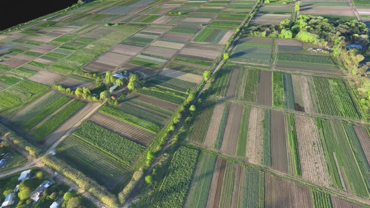 Farm Crops - UAV Mapping 3D Model