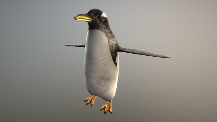 Gentoo Penguin zoo 3D Model