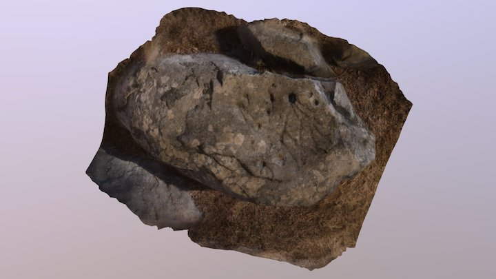 CHAPARRAL 3D Model