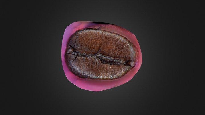 Olympus Coffee Bean 3D Model