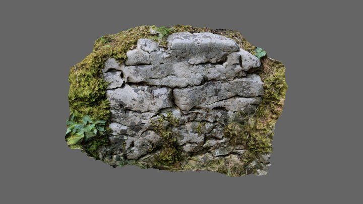 photoscan rock 3D Model