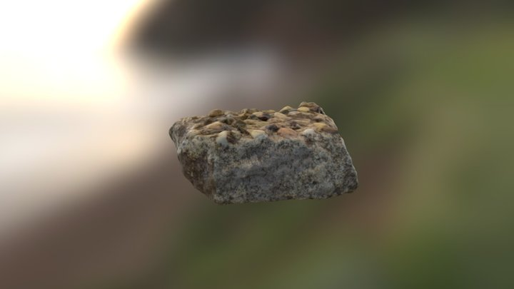 Cement Artifact From Trench 2 3D Model