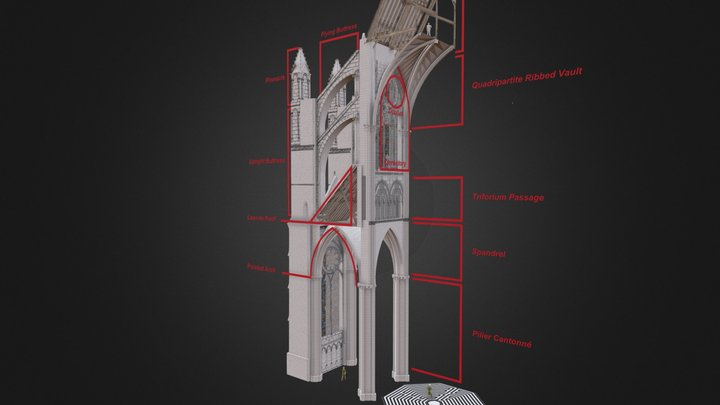 Animated Glossary of a Gothic Cathedral 3D Model
