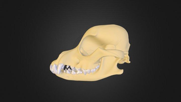 Test_02 3D Model