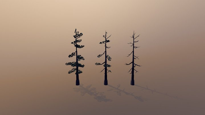 Old Pine Tree (Low Poly) 3D Model