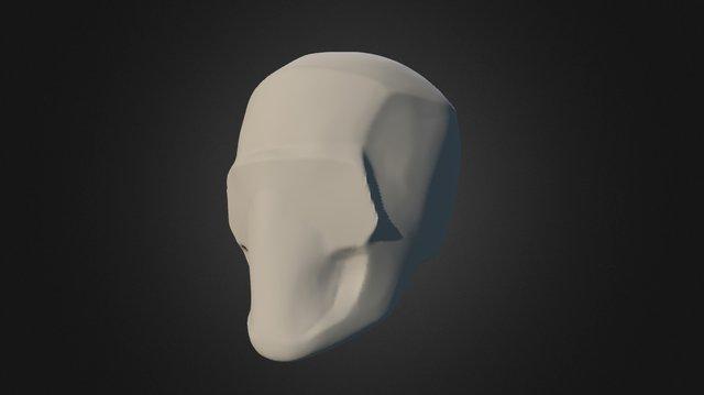 Skull Simplification 3 3D Model