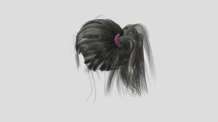 Ponytail Hair for Character 3D Model