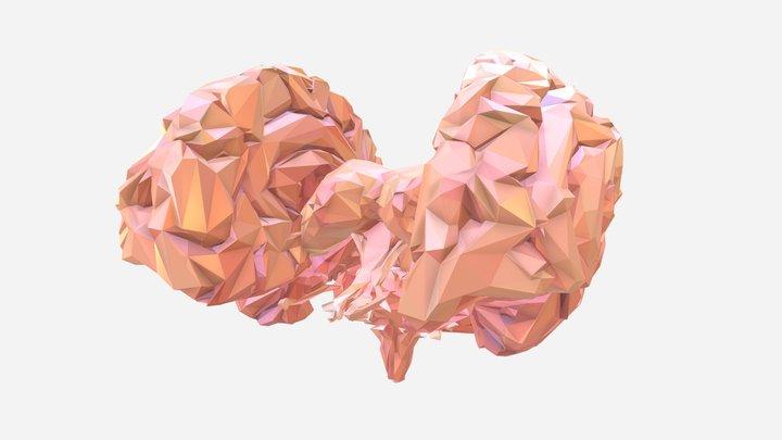 Low Polygon Art Medical Brain Color 01 3D Model