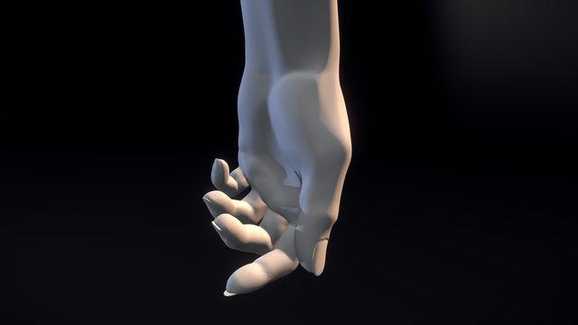 Hand Study (female) 3D Model