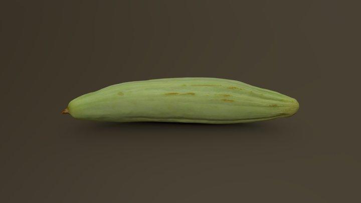 White (Armenian) Cucumber 01 3D Model