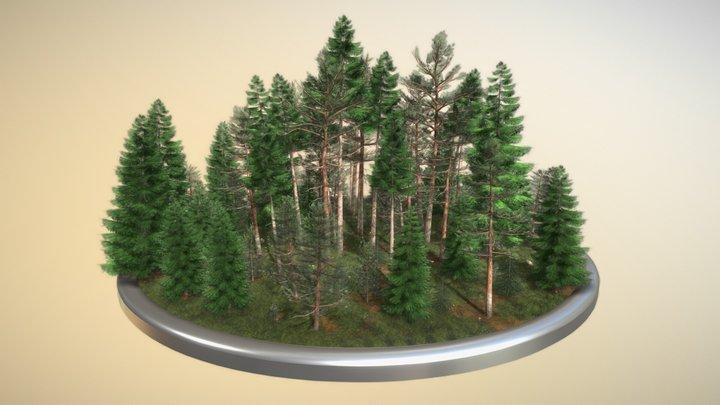 Coniferous Forest / Nadelwald - Kiefern Fichten 3D Model