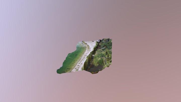 3D Road Mangrove 3D Model