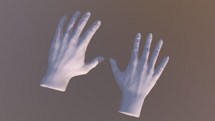 Male and Female Hands 3D Model