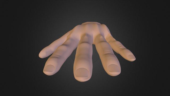 Hand 101 3D Model