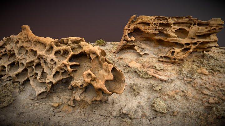 Miller's Cows (Heavily Eroded Sandstone) 3D Model