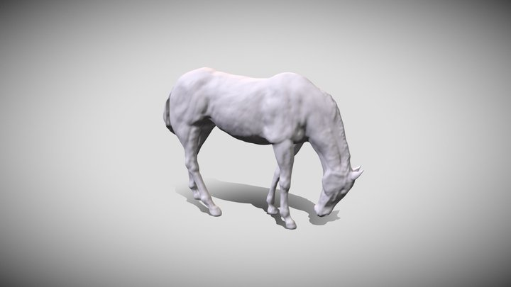 Horse Feeding 3D Model