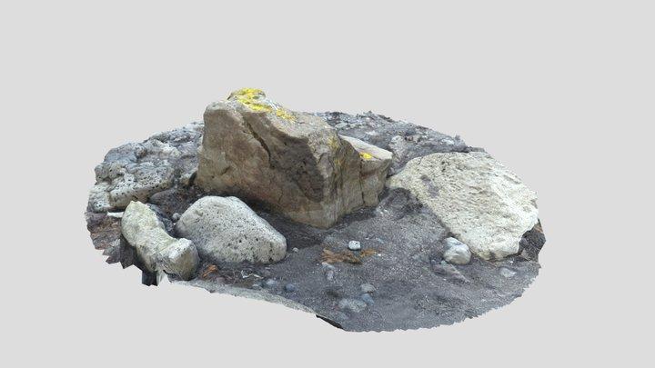 A rock sitting on the Reykjavík shoreline 3D Model