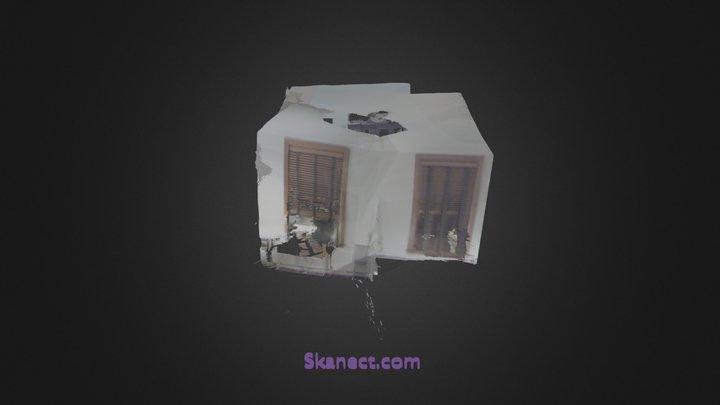 New Skanect Model 3D Model