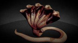 5Headed Snake 3D Model