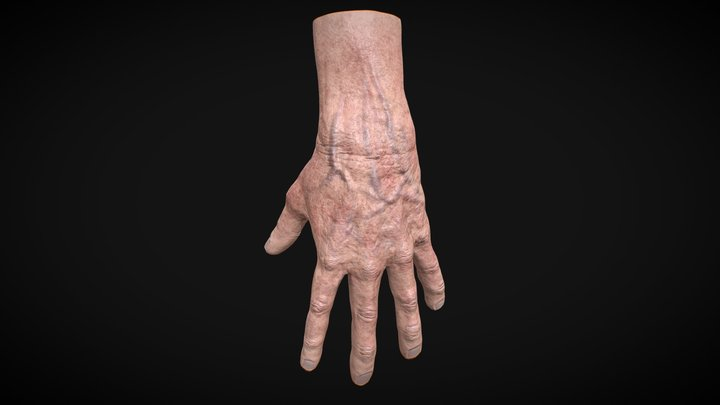 Realistic old man hand (Rigged) 3D Model