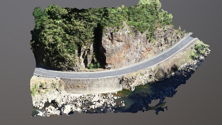 Karangahake Gorge:  Simplified 3d Mesh 3D Model