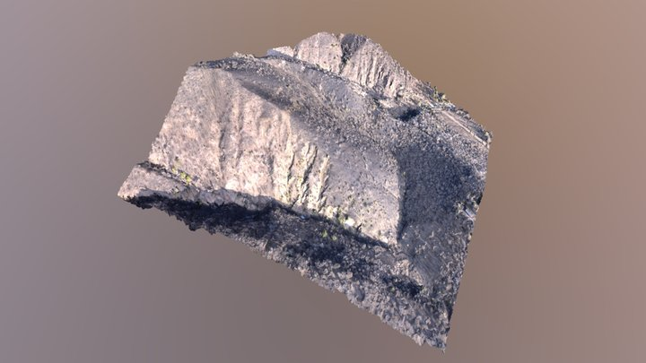 Wildfire - Environmental photogrammetric mapping 3D Model
