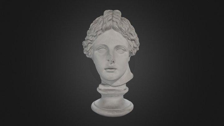 Testa di Apollo Liceo 3D Model