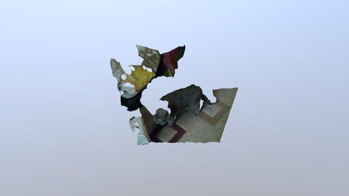 4D video (R200 #07, cat & the bag) 3D Model
